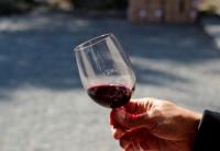 Santiago: Visita a vinícola Concha y Toro