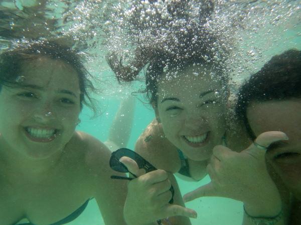 Foto Jacu - Jacu até debaixo d'água