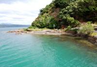 Wellington: Um passeio pelo mar da Nova Zelândia