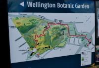 Wellington: O Jardim Botânico