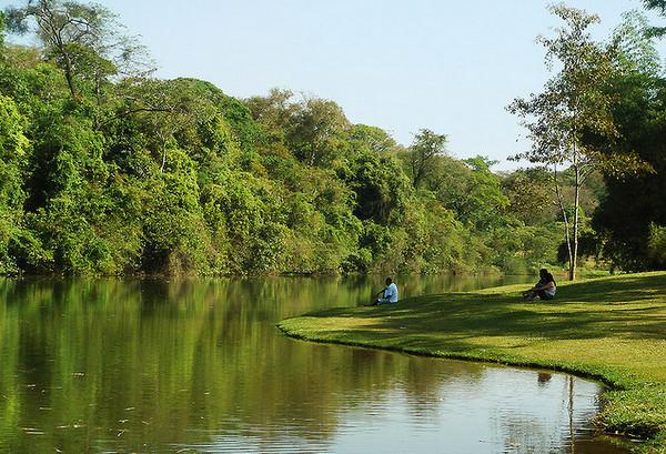 cerca para jardim goiania: de caminhada deck trilhas ecológicas viveiro e um centro de