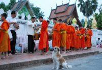 A ronda das almas em Luang Prabang