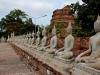 Várias estátuas de Buda em Ayutthaya