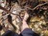 pirenopolis-cachoeira-do-rosario-6