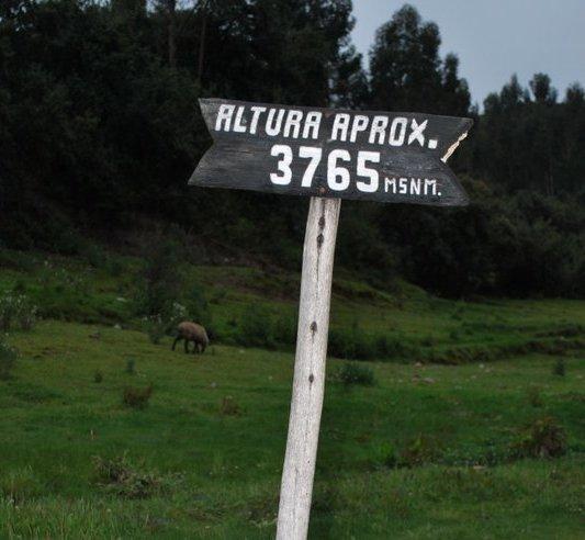 Tambomachay   Cuzco