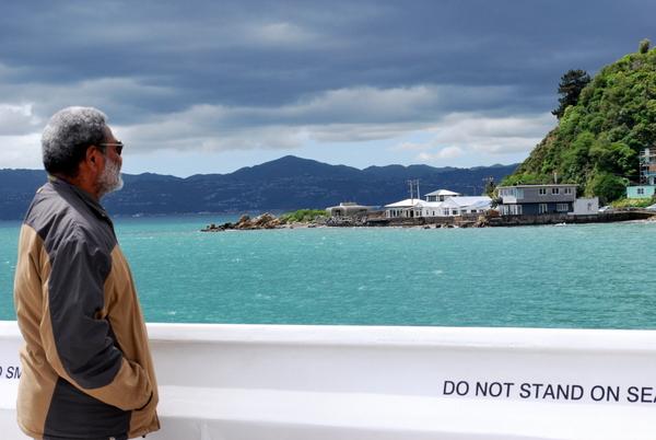 Passeio de Barco em Wellington | Vista de tirar o fôlego!