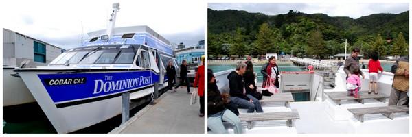 Passeio de Barco em Wellington | Nova Zelândia | O barco