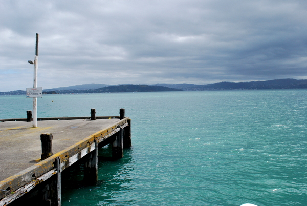 Passeio de Barco em Wellington | Nova Zelândia | Uma das ilhas