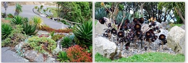 Wellington | Jardim Botânico (2)
