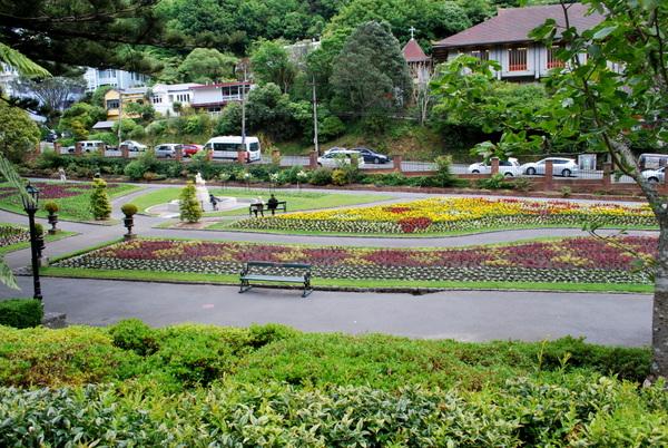 Wellington | Jardim Botânico (3)