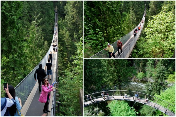 Suspension Bridge | Vancouver