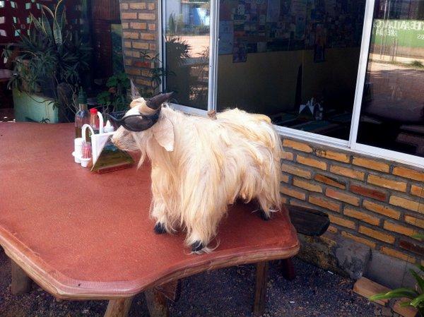 Decoração do Restaurante Buritis em São Jorge