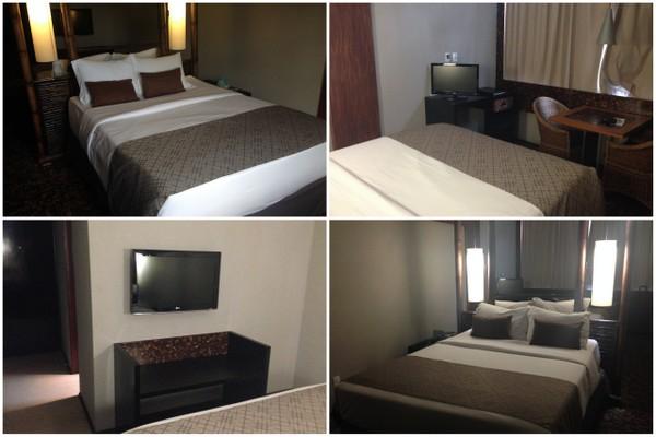 Ritz Lagoa da Anta   Dupla cama de casal e TVs
