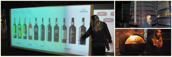 Dicas de harmonização de vinho | Cave Calem |Porto