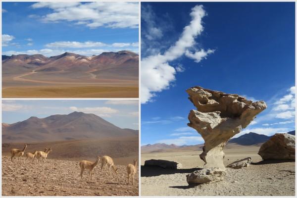 Salar de Uyuni | Arbol de Piedra