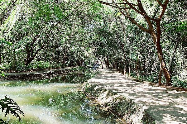 Bosque dos Buritis | Goiânia