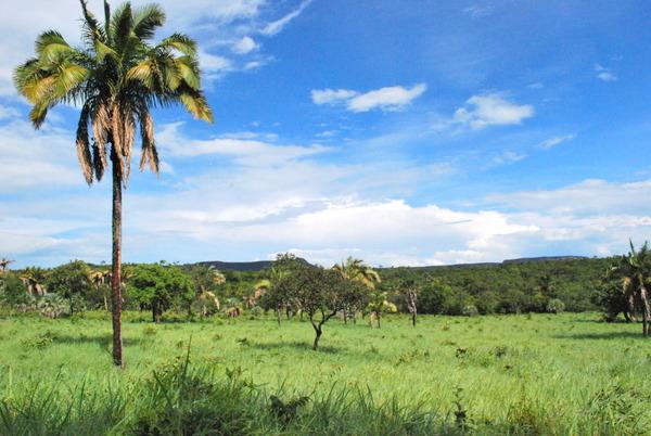 Parque Estadual de Terra Ronca 2