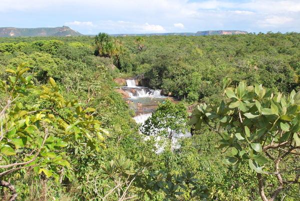 Cachoeira Palmeira | Terra Ronca