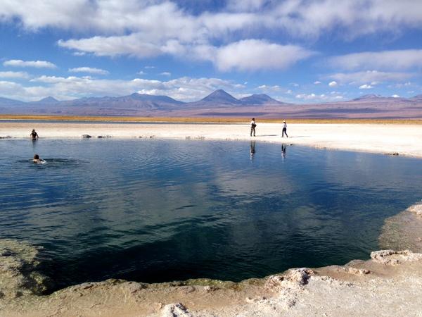 Laguna Cejar | Mochilão pela América do Sul