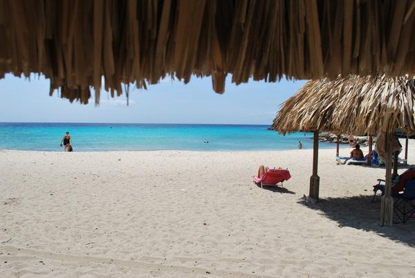 Daaiboi | Curaçao | Caribe