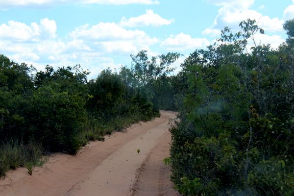 Estradas arenosas no Jalapão