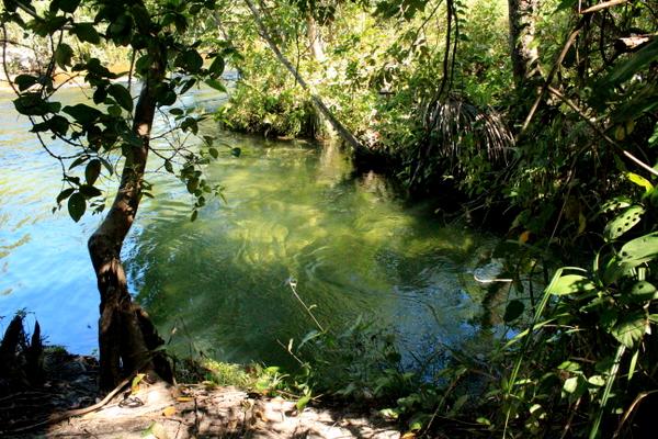 Poço do encontro das águas do Rio Soninho com o Rio Formiga no Jalapão