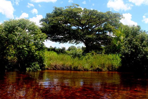 Rio Soninho no Jalapão